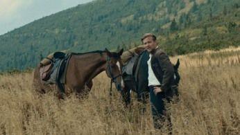 Napolju i konje kradu